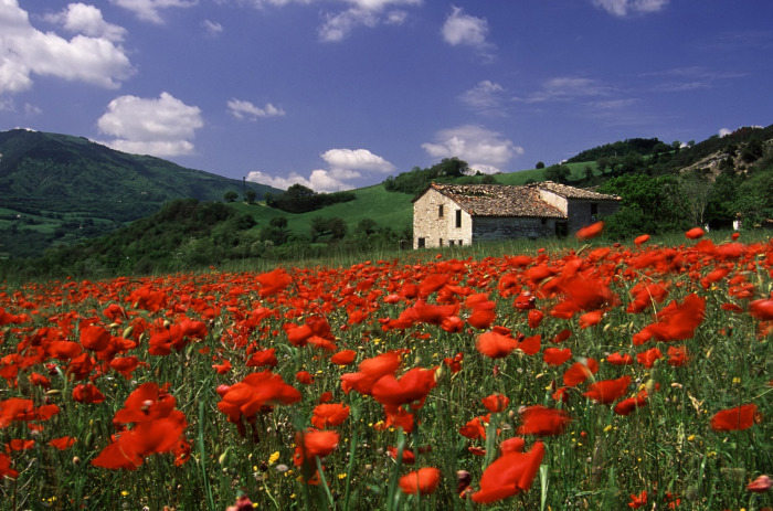 What is the best view of Italy in May?   Italian Indulgence's Blog